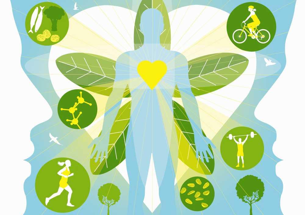 rata metabolică de repaus pentru pierderea în greutate)
