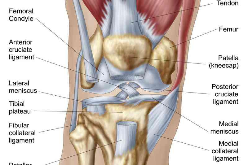 Inflamația capsulei articulare și a ligamentelor înconjurătoare - Patogenia condrocalcinozei